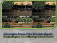 Water fountains have actually become a necessity of landscape design nowadays. Outside fountains can improve the aesthetic appeal of the surroundings of your residential property Outside Fountains, Water Fountains, Types Of Fish, Huntington Beach, Water Features, Landscape Design, Pond, Plants, Water Sources