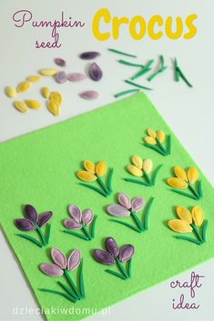 pumpkin seed craft idea for kids Spring Activities, Craft Activities For Kids, Projects For Kids, Diy For Kids, Summer Crafts, Fall Crafts, Easter Crafts, Preschool Crafts, Diy And Crafts