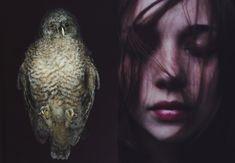 photos by Laura Makabresku Laura Makabresku, N Animals, Bird Skull, Animal Totems, Art Of Living, Girl Photos, Kitten, Halloween Face Makeup, Death