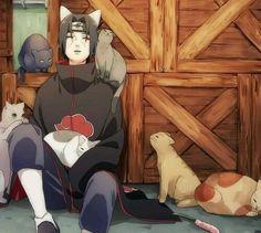 Itachi cat<3~hanyuu