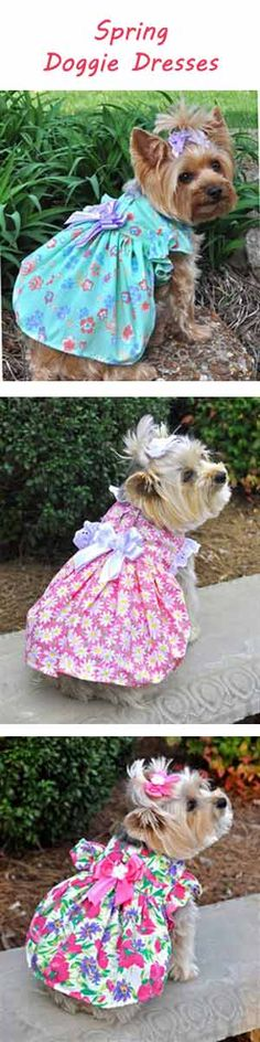 The new spring collection of flower prints doggie dresses with hair bow option Big Dogs, Cute Dogs, Dog Love, Puppy Love, Pet Boutique, Hot Hair Styles, Fancy Nancy, Dog Dresses, New Puppy
