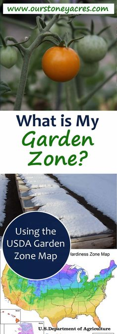 What is my garden zone? Knowing your garden hardiness zone is an important part of planning and planting your garden.at is My Garden Zone