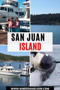 This is a guide to San Juan Island. How to get there from Anacortes, and what to expect. Things to do and where to go on Friday Harbor and Roche Harbor. Our favorite places to stay and how to take a whale watching tour. Washington State Campgrounds, Washington State Parks, Western Washington, Whale Watching Tours, San Juan Islands, Boat Dock, Once In A Lifetime, Vancouver Island, Go Camping