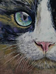 Giclee Print: Snowshoe Cat by Michael Paperfinch : 32x24in