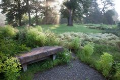 Morning dew covers Nassella tenuissima, or Mexican Hair Grass, in The Gravel Garden at Chanticleer.