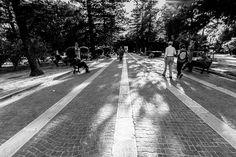 Lecce tra luce e istante [2/7]  La vita è un lungo viaggio da percorrere insieme.  Raffaella De Palma