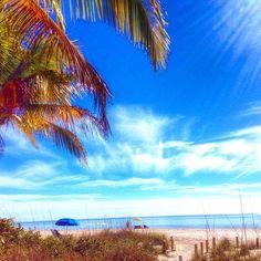 Life's better under a beach umbrella #palmtrees #beachlover #paradise #sandytoes #saltwater #staysalty #visitflorida #saltair #beachbum #islandgirl #islandlife #oceanlove #sanibelstar #santiva #sanibelisland #captivaisland #sanibel #captiva #ftmyersbeach #naples #pineisland #ftmyers