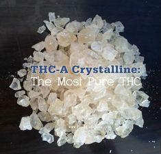 THC-A Crystalline is the strongest hash currently available on the market. It has the highest potency at an amazing THC. Marijuana Recipes, Cannabis Edibles, Cannabis Oil, Cannabis Growing, Medical Marijuana, Marijuana Funny, Healing Herbs, Helpful Hints, Display