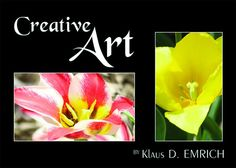 Embedded image permalink Book Cover: © photo by Klaus D. Emrich - courtesy of Von Der Alps Publishing Corporation CANADA Best Photographers, Embedded Image Permalink, Alps, Creative Art, Authors, Poetry, Canada, Artists, Amazon
