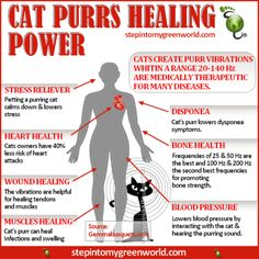 infographic about cat health benefits