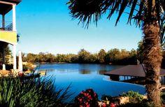 infinity pool, Morehead Pools in Louisiana Above Ground Pool, In Ground Pools, Above Ground Fiberglass Pools, Small Inground Swimming Pools, Roman Pool, Pool Remodel, Luxury Pools, Building A Pool, Pool Builders