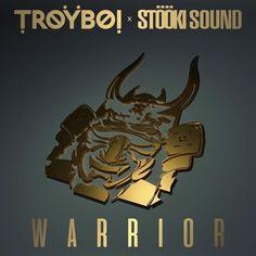 TroyBoi x Stooki Sound - Warrior - http://trapmusic.biz/troyboi-x-stooki-sound-warrior/ #Bass, #EDM, #FreeTrap, #StöökiSound, #Trap, #TroyBoi, #Warrior