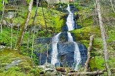 Fern Branch Falls - Porters Creek Trail - Great Smoky Mountain National Park - Tennessee
