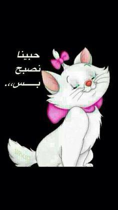 DesertRose,,, good morning Good Morning Arabic, Good Morning Good Night, Morning Wish, Good Morning Images, Crazy Funny Memes, Wtf Funny, Funny Jokes, Arabic Funny, Arabic Jokes