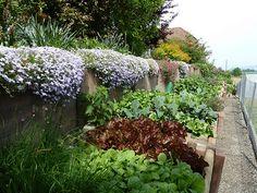 "Edible Landscaping: Ursela""s vegetable \ flower garden in Switzerland | jardin potager | bauerngarten | köksträdgård"