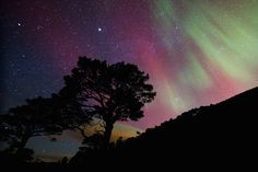Catch the dramatic northern light displays in Scotland. Check out our 10 tips for viewing the Northern Lights in Scotland. Northern Lights Scotland, Cairngorms, Best Positions, Scottish Highlands, Scotland Travel, Aurora Borealis, Pilgrimage, Wilderness, The Good Place