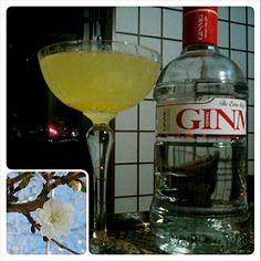 飲みやすいGINMAG が手に入ったので、冷蔵庫のオレンジを絞ってカクテルにしてみました(^q^) - 19件のもぐもぐ - London dry gin and squizeed orange, it's my night cap tonight! Va bene cosi, cara mia? by quita