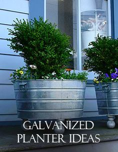 Galvanized planters!  Everything from a trough to grandmas's washtub.  What fun...
