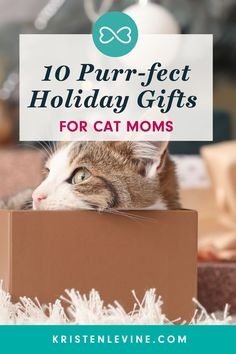 Looking for a gift guide for the cat person in your life? Here are my top 10 favorite gifts for the cats and cat lovers on your holiday shopping list. Gifts For Pet Lovers, Cat Gifts, Cat Lovers, Unique Toys, Get Excited, Love Pet, Pet Health, Gift Guide, Holiday Gifts