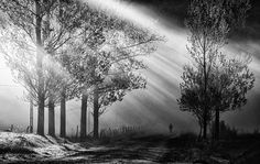 Dramatic Black & White Photography by Cornel Pufan - 9Template Blog