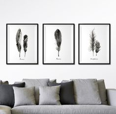 Feather print Set of 3 print, Watercolor painting, Black and white print Feather art, Nature print, Apartment decor, Wall decor by colorZen on Etsy