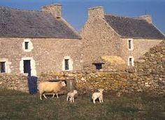 Maisons traditionnelles d'Ouessant avec avant-cour et muretin. Brittany