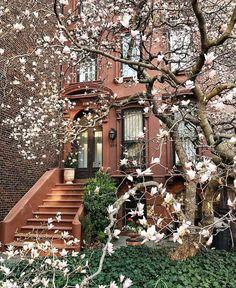 SoHo, Manhattan,