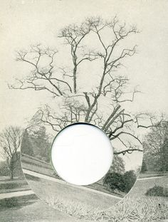 DAVID GATES, TREE, 2011 PAPER COLLAGE ON CARD, 5.9INX4.3IN