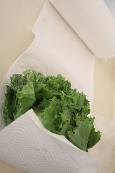 How To Make Lettuce & Other Fresh Produce Last Longer - Cottage Notes