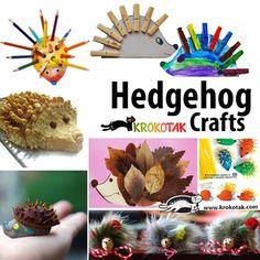 hedgehod kids crafts