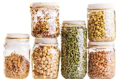 Sprouted grains offer higher percentages of nutrients compared to whole-grain products, and may be easier for some people to digest.