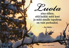 Mietelause luottamus Finnish Words, Peace Of Mind, Qoutes, Motivational Quotes, Mindfulness, Thoughts, Love, Feelings, Happy