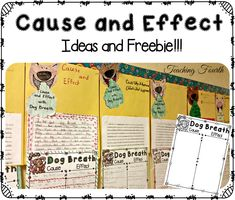 Cause and Effect: Anchor Chart, Picture Books to Teach Cause and Effect, Ideas, and a Freebie!