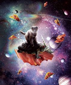 'Space Cat Riding Turtle Unicorn - Bacon & Taco' Poster by SkylerJHill Wtf Funny, Funny Cats, Framed Prints, Canvas Prints, Art Prints, Bacon Taco, Pizza Cat, Funny Posters, Space Cat