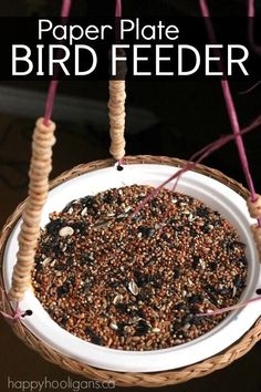 Paper Plate Bird Feeder - Kids can make an easy birdfeeder with a paper plate, raffia and cheerios - Happy Hooligans