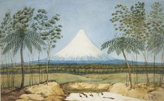 Heaphy, Charles Mt Egmont from the southward, 1840 Watercolour National Library of New Zealand Purchased with other New Zealand Company material in London in 1915 by Alexander Turnbull Ref: Landscape Prints, Landscape Paintings, Nz History, History Online, Online Art Store, Colonial Art, New Zealand Landscape, New Zealand Art, Nz Art
