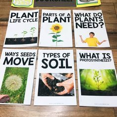 Seeds & planting is a fun unit to teach in the spring. This unit includes an observation journal, parts of a plant, ways seeds move, photosynthesis, & more! Teaching Writing, Student Teaching, Teaching Science, Teaching Kids, Science Tools, Kid Science, Science Ideas, Science Activities, Readers Workshop