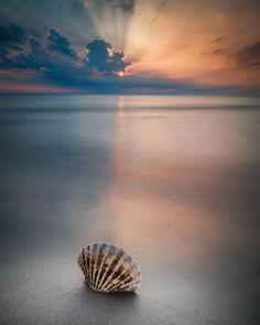Fuji Kamera, Pretty Pictures, Pretty Pics, Am Meer, My Happy Place, Coastal Living, Pet Birds, Serenity, Natural Beauty