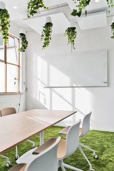 Office Tour: Tara Pac Offices – Lund Hanging office plants at Tara Pac Offices – Lund Local Commercial, Commercial Design, Commercial Interiors, Green Interior Design, Modern Interior, Green Office, Small Room Design, Office Plants, Office Interiors