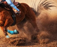 I wanna try so bad, got find the right horse :) #dream