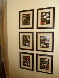 The King's Custom Framing - Pinehurst, Southern Pines, Aberdeen and Sandhills Custom Framing, Wall Art, Wall Display, Custom Picture Frame, Southern Pine, Stairway Walls, Frame, Wall Color, Picture Frame Designs