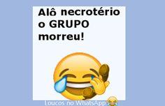 Loucos no WhatsApp