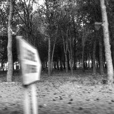 No creo en las despedidas. Prefiero pensar que son huidas temporales. Country Roads, Running Away, Thinking About You