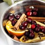 Holiday Stove-top Potpourri {Thanksgiving Blitz #8}