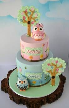 Birthdays are a Hoot-owl cake for twins, boy & girl