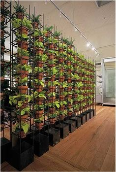 vertical garden- cute idea but i would be concerned with the amount of salt that runs off from the bottom of one pot to the other... just saying.