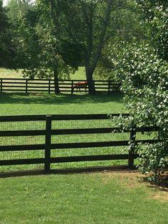 blueu0027s paddock all fenced u0026 cross fenced with 4rail black board fencing
