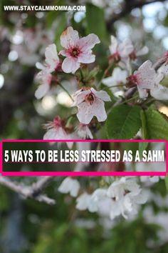5 Ways to be less stressed as a SAHM   Staycalmmomma