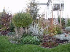 Løvli, livet på landet.: Høst i hagen Garden, Plants, Pictures, Photos, Garten, Flora, Plant, Lawn And Garden, Outdoor