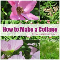 How to Make a Photo Collage - Blogging with Amy